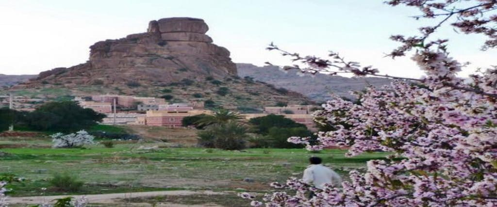 2 Days Tour Agadir Tafraoute