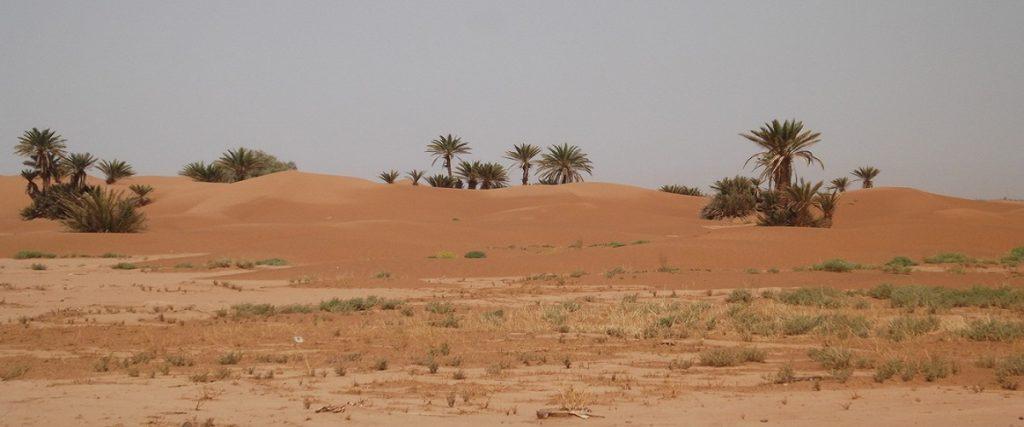 3 days Desert erg chigaga tours from Marrakech